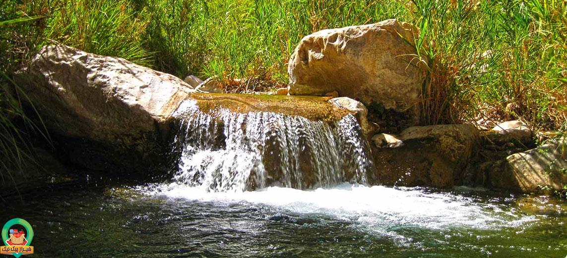 شیراز پیک نیک -  طبیعت داراب
